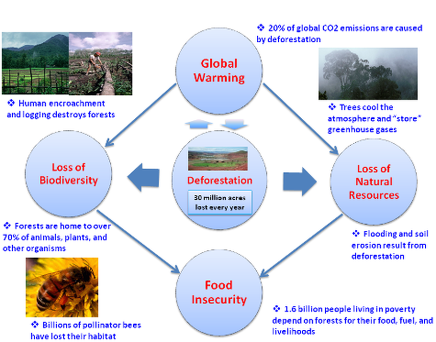 Natural Resource Conservation Long Term Effects